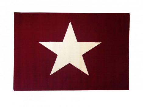 70.1567 Csillagos red szőnyeg 120x170 cm - A KÉSZLET EREJÉIG!