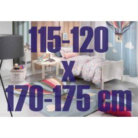 115-120 x 170-175 cm
