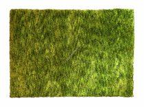 Chill out 510 green szőnyeg  80x150 cm - A KÉSZLET EREJÉIG!