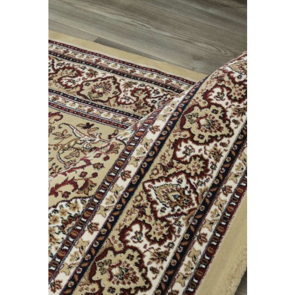 Excellent 802 bézs közép mintás indás szőnyeg 200x290 cm