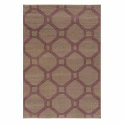 Gustavo 3220 barna modern mintás szőnyeg  80x150 cm